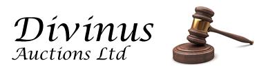 Divinus Auctions Ltd