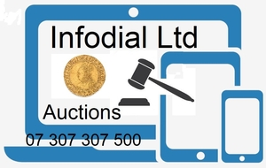 Infodial Auctions